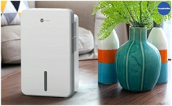 Difference Between an Air Purifier and a Dehumidifier