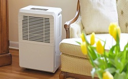 How To Tell If You Need A Dehumidifier In Your Home