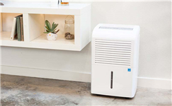 Definition of home dehumidifier